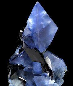 Blue Benitoite crystals (barium/silicon/ titanium) with black Neptunite. Type Locality: San Benito Co. CA