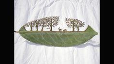 En fotos: Arte perforado en las hojas de los árboles