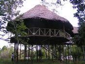 tahuayo lodge amazon