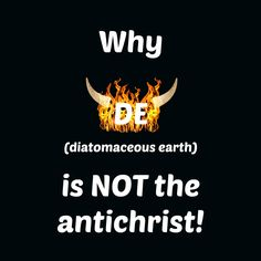 Why DE is NOT the antichrist!
