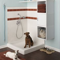 Sharp looking and convenient shower for the pets  http://www.bhg.com/decorating/