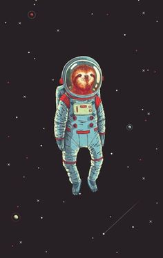 Slothed In Space