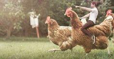 New version t-rex army. Chicken invasion. #utopia #utopie #утопия #유토피아 #ユートピア #utopía #illustration #art #arte #kunst #예술 #искусство #アート #sanat #illüstrasyon #grafic #humor #mizah #юмор #grafiktasarim #chicken #trex #army #war #artist #tavuk http://turkrazzi.com/ipost/1518989527422445465/?code=BUUiO1fjaeZ