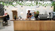Auckland's Hidden Culinary Heaven: Bowl & Arrow and Farro (Orakei Bay Village) Bay Village, 5 Years, Arrow, Heaven, Modern, Table, Furniture, Home Decor, Sky