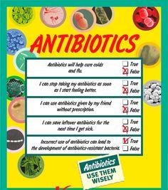 prednisone and antibiotics