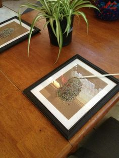 "Sand on photo frames at Puzzles Family Day Care ("",)"