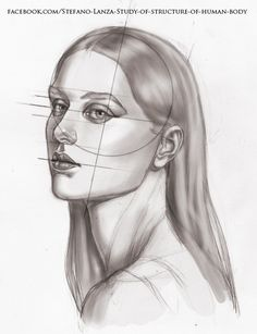 https://www.facebook.com/Stefano-Lanza-Study-of-structure-of-human-body-1479159998770051/?ref=bookmarks #head #anatomy #art #drawing #draw