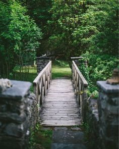 """Mi piace"": 3,088, commenti: 29 - Eva Kosmas Flores (@evakosmasflores) su Instagram: ""One of the beautiful little bridges I saw during my stay in Ireland  @Divabakes opened her home to…"""