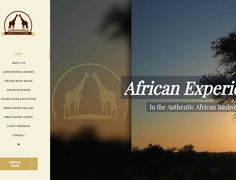 Dynamic Website Design >>  Mbazi Safaris www.mbazisafaris.co.za  CREATED BY DESIGN SO FINE