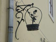 Vintage flower shop signboard_ Miskolc, Hungary