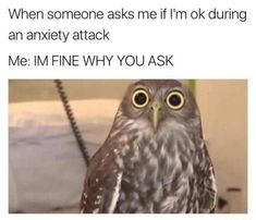Anxiety Is No Joke In 37 Laughter-Inducing Memes