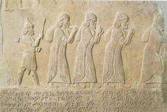 Omri on Sargons Palace