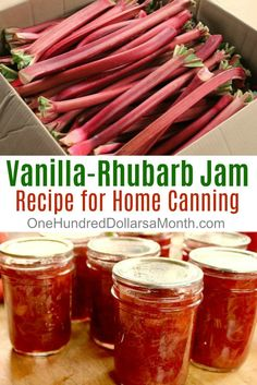 I picked up a few stalks of rhubarb this morning and thought you might be harvesting rhubarb as well, so I am reposting this recipe for Vanilla-Rhubarb Jam. The recipe came from from Food in Jars, and let me tell you Bob, it's flippin' delicious. Vanilla Recipes, Rhubarb Recipes, Jelly Recipes, Drink Recipes, Rhubarb Desserts, Home Canning, Canning 101, Jam And Jelly, Meals In A Jar