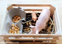 Building Language with Small World Play / Pig Pen (from Twodaloo)