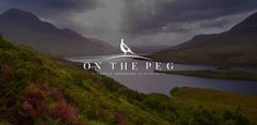 On The Peg brings together the best in ladies' shooting clothing. Whether you shoot clay or game, beat or pick-up, we have practical clothes that also look good, so you have a great day in the field. Tweed Coat, Tweed Jacket, Shooting Club, Shooting Clothing, Lady Games, Shooting Accessories, Bird Design, Kingfisher, Womens Scarves