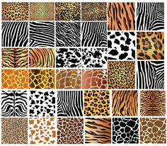 Seamless Animal Pattern Royalty Free Stock Photography Image