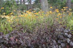 large woodland garden design - wildlife & woodland garden design - Scottish garden design portfolio - garden design edinburgh & scotland