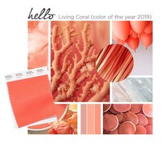 Pantone Color of the