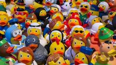 Toy Ducks – Wednesday's Free Daily Jigsaw Puzzle