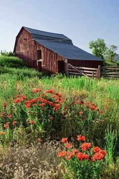 We have a vintage barn on the ranch. Love old barns! Country Barns, Country Life, Country Living, Country Roads, Mill Farm, Farm Barn, Barn Pictures, Barns Sheds, Farms Living