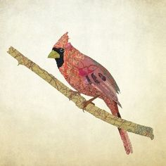 Cardinal collage made of maps