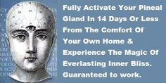 Open Your Third Eye and Awaken Your Pineal Gland With These Simple ...