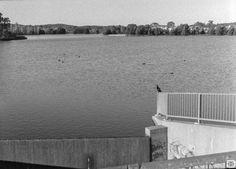 T Max, Urban Landscape, Olympus, Still Life, Landscape Photography, Pond, Australia, Film, Beach