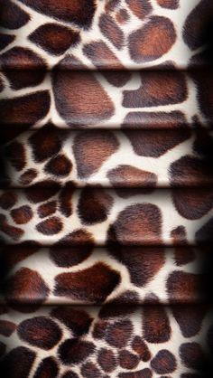 Best Leopard wallpaper ideas on Pinterest Leopard print