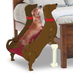 {doxie stairs} eep!