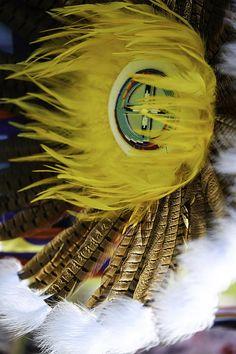 Native American regalia ~ feather bustle