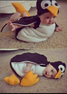 Baby im Pinguin Kostüm … Baby in Penguin Costume Funky Baby Clothes, Fall Clothes, Dress Clothes, Dress Shoes, Shoes Heels, Halloween Bebes, Diy Halloween, Halloween Pictures, Halloween Night