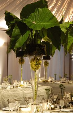 White and green Father's Day brunch centerpiece by Preston Bailey. Look at those palm leaves! Tropical Centerpieces, Table Centerpieces, Wedding Centerpieces, Centrepieces, Wedding Reception Decorations, Wedding Table, Deco Floral, Floral Design, Floral Wedding