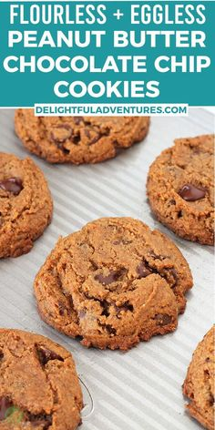 Homemade peanut butter chocolate chip cookies that are flourless, dairy-free, vegan, and gluten-free. These quick and easy eggless cookies are soft, chewy, delicious and call for ONLY seven simple ingredients. They're loaded with gooey chocolate chips and you can have them ready to serve in just 20-minutes! Easy Vegan Cookies, Vegan Oatmeal Cookies, Gluten Free Peanut Butter Cookies, Vegan Gluten Free Desserts, Vegan Chocolate Chip Cookies, Gluten Free Recipes For Breakfast, Vegan Sweets, Vegan Recipes Easy, Chocolate Chips