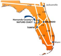 Map of Florida peninsula showing location of Hernando County Nature Caost on the Gulf Coast of Florida. Centrally located in the heart of Florida.