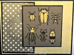 Crafty Maria's Stamping World: Beetles & Bugs Try Stampin' or Not on Tuesday #320