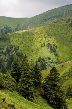 Brasov County, Romania (by Horia Varlan) Brasov Romania, Visit Romania, Beautiful Places To Visit, Beautiful Things, What A Wonderful World, Adventure Is Out There, Amazing Nature, Beautiful Landscapes, The Great Outdoors