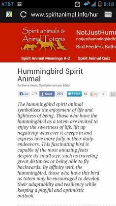 Humming bird meaning