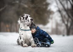 Little Kids and their Big Dogs - GreatDaneChronicles