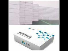 OEM available DNA genetic testing sample collection kit Dna Kit, Genetics, Oem, Collection