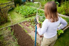 Weeding can be a drag, but having the right tools on hand can make all the difference. Here are 6 favorite weeding tools to help get the job done in a flash. Diy Projects For Beginners, Gardening For Beginners, Gardening Tips, Container Gardening, Fall Vegetables, Growing Vegetables, Veggies, Gardening Vegetables, Herb Garden