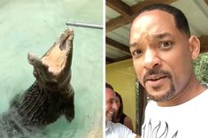 Will Smith Instagrammed His Trip To The Zoo And He Absolutely Needs To Do A Nature Documentary Now