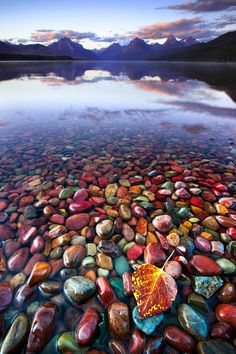 Whoever took this captured the essense of what I have seen on Maine's rocky coast... The magic of stones that radiate color under water.
