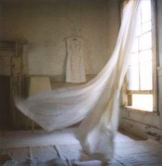 Tudo passa Até o vento Que passa atento Pela janela Pra me ventar Da vida dela  ─ António Corvo  facebook.com/ailhadocorvo ailhadocorvo.blogspot.com