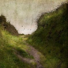The Brilliance of Ordinary | by jamie heiden