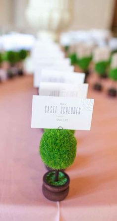 Mini topiaries for wedding place cards - The Wedding Story of Livia & Ryan Cook | WeddingDay Magazine
