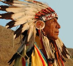 """"""" Each of us is put here in this time and this place to personally decide the future of humankind. Did you think the Creator would create unnecessary people in a time of such terrible danger? Know that you yourself are essential to this world. """"    —Chief Arvol Looking Horse"""