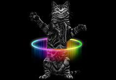 HULA HOOP CAT  Artwork