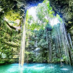 @Easyvoyage - Amazing view of Ik-Kil Cenote in Yucatan Mexico  #myeasyvoyage #cenote #mexico #yucatan #colors #neverstopexploring #passionpassport #nature #bluewater #naturelovers #wonderful_places #wanderlust #greatexperiences #outdoors #lan