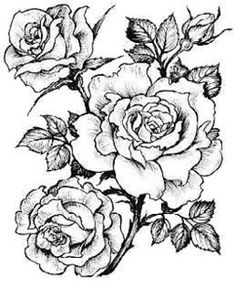 Embroidery Flowers Pattern, Flower Patterns, Flower Designs, Bird Drawings, Pencil Art Drawings, Diviant Art, Rose Reference, Stencil Printing, Tattoo Outline