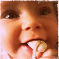 Iris Root Teether - Natural Teething Remedy  A long-standing European natural teething aid is the Iris root, it is a tried and tested, completely natural teething remedy.